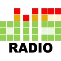 diis Radio - 91.1 FM