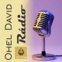 Ohel David