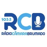 Câmara 103.3 FM