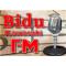 Bidu Kawasaki FM