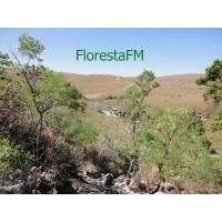 Floresta FM