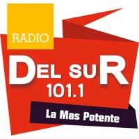 Del Sur 101.1 FM