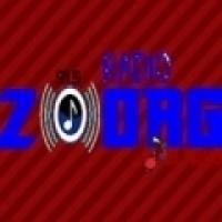 Rádio Zoorg FM - 91.5 FM