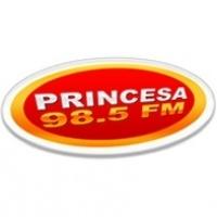 Rádio Princesa - 98.5 FM