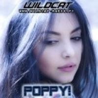 Rádio Poppy - WildCat